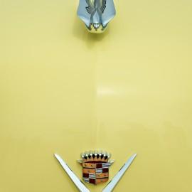 Cadillac by Peter Adams.
