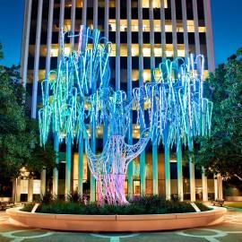 Aurora In Palo Alto