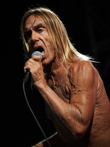 Iggy Pop / Iggy and The Stooges by Peter Adams.